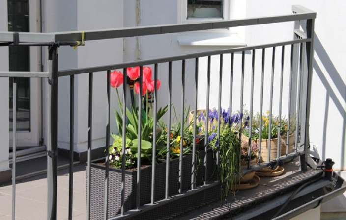 balcon_siteweb